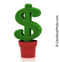 sign of dollar, growing in a flowerpot