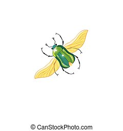 Sign vector green beetle in flight on a white background