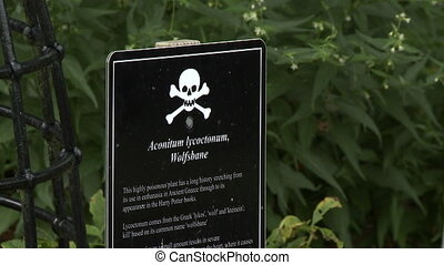 Steady, close up shot of a sign warning onlookers of the poisonous Wolfsbane plant.