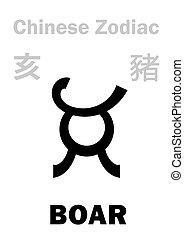 (sign, zodiac), astrology:, chino, verraco