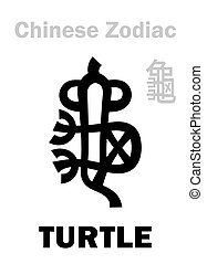 (sign, zodiac), tortue, chinois, /, tortue, astrology: