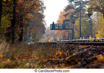 Signal at Railroad Tracks in a Fall Forest Landscape