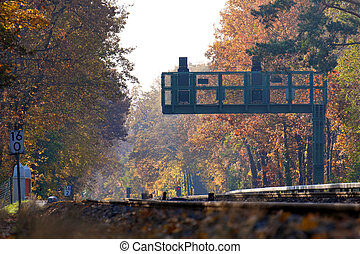 Signal at Railroad Tracks in Fall Forest Landscape
