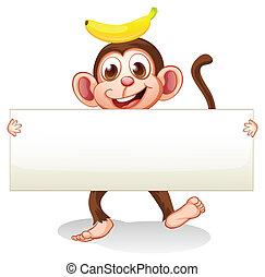 signboard, macaco, vazio, costas