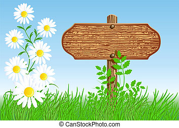 Signboard on the meadow with daisies - Wooden signboard on ...