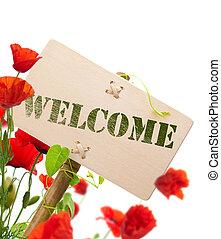 signe bienvenu