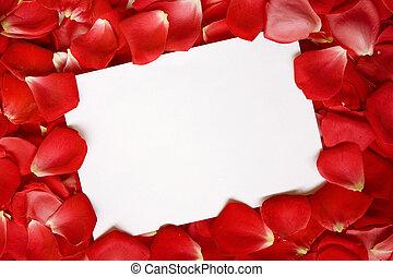 signe, fond, roses