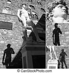 signoria, plaza, collage, david, estatua, imágenes, florencia