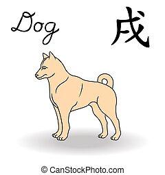 signos, oriental, cão, sinal