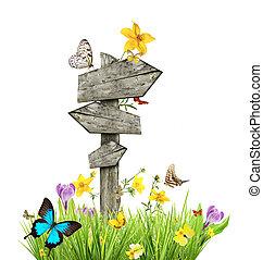 signpost, em, prado, com, borboletas, conceito, de, primavera