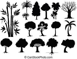 sihouette, forskellige, typer, i, træer