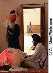 Sikh Man Praying at Golden Temple, Amritsar, India
