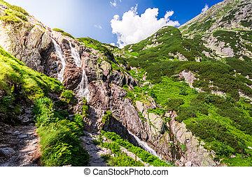 siklawa, cascata, tatra, montagne