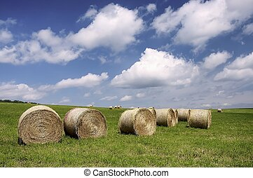 Silage in the meadow with clouds in the background