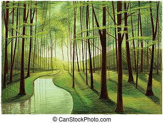 silencieux, forêt, rivière verte