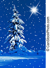Silent night - Snowy night with the north star in the sky.