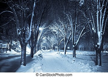 Duotone image of a snow covered path lit by street lights