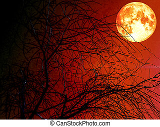 silhouete dead dry tree and blood moon red sky
