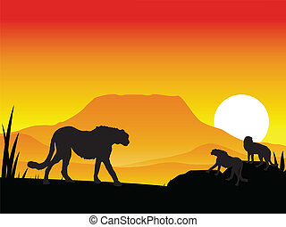 silhouetee group cheetah - vector illustration of silhouette...