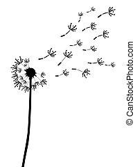 silhouett, esboço, dandelion