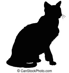silhouette, 4, chat