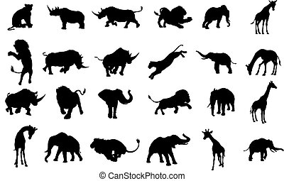 silhouette, afrikaan, safari, dier