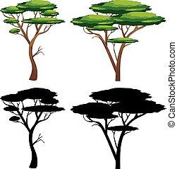 silhouette, albero