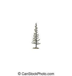 silhouette, albero, isolato, pino, mano, fondo., vettore, illustrazione, sketched, monocromatico, bianco, simbolo, style., casato