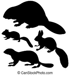silhouette animal on white background