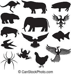 silhouette, animale, collezione