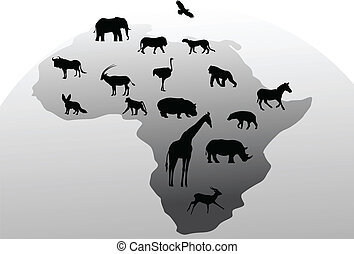 silhouette, animale