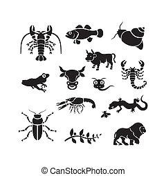 Silhouette - animals