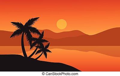 silhouette, arbre, arbres, exotique, paume, plage coucher soleil