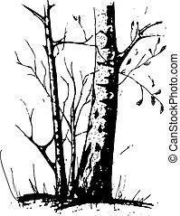 silhouette, arbre, isolé, arrière-plan noir, blanc