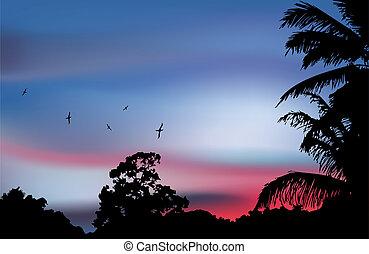silhouette, arbre, vecteur, paume, paradis, sunset.
