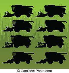 silhouette, avoine, blé, récolte maïs, seigle, orge, vecteur, combiner, illustration, fond, champs, grain, récolte