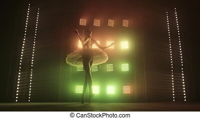 Silhouette Ballet Dancer Performing Swan Lake on the stage ...