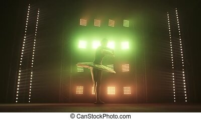 Silhouette Ballet Dancer Performing Swan Lake on the stage of the theater. Beauty Concept Slow Motion