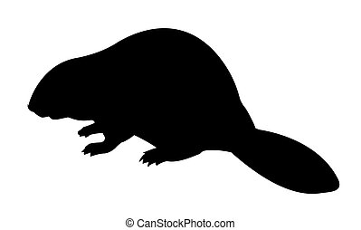 silhouette beaver on white background - silhouette beaver on...