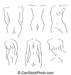 silhouette, bianco, nudo, fondo, ragazze