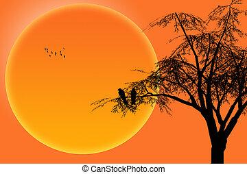 silhouette birds on branch tree