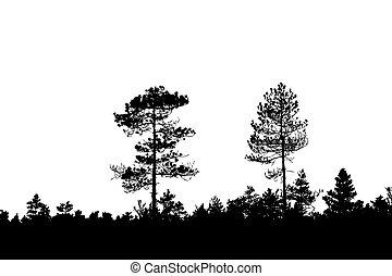 silhouette, bois, blanc, fond