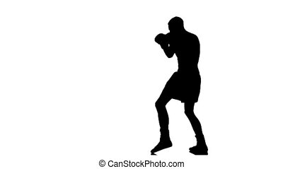 Silhouette boxer man coached defense. Slow motion