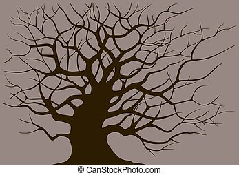Silhouette branching of an old tree