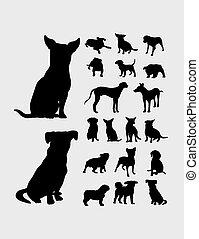 silhouette, cane, collezione