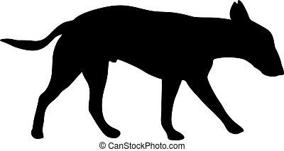 silhouette, cane, fondo, toro, bianco, terrier
