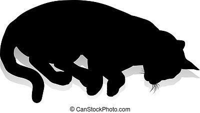 Silhouette Cat Pet Animal - A silhouette cat pet animal...