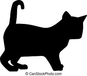 silhouette, chaton