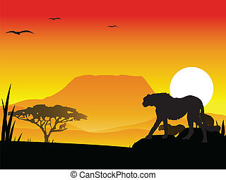 silhouette cheetah and eagle - vector illustration of...