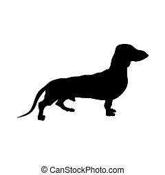 silhouette, chien basset allemand